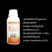 phosphorus100cc