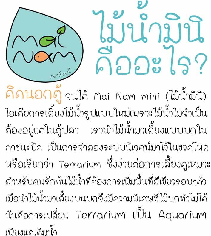 ไม้น้ำมินิคืออะไร3